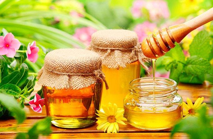 Можно или нет мед при панкреатите и холецистите
