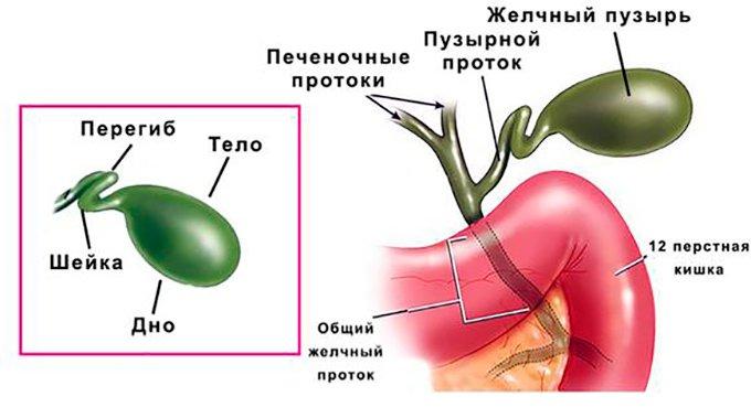 перегиб желчного пузыря запах изо рта